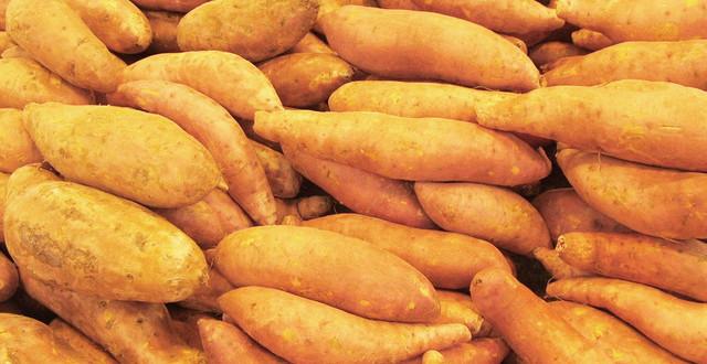 sweet potatoes FI SC