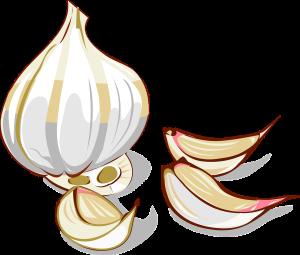 garlic-25382_1280
