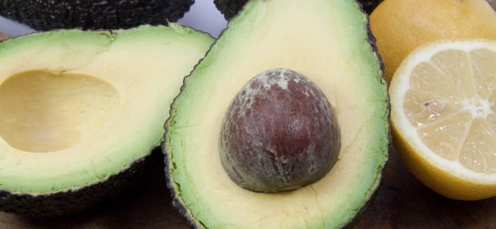 avocado-PX SC