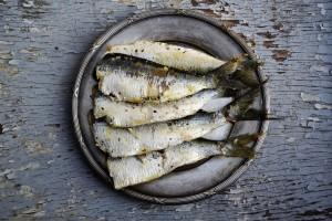 sardines-PX SC